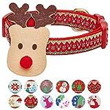 Blueberry Pet Collier Chien de Noël avec Décor de Renne, Grande Taille (L), Tour de Cou 45cm-66cm, Colliers Ajustables pour Chiens