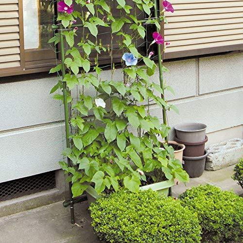 SUREH Ranknetz für Ranken, Ranken, Ranken, Gemüse- und Rankgitter, 2 x 10 m mit 15 cm Masche