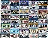 OPO 10 - Lote de 40 Placas de matrícula de automóviles de EE. UU. En Metal - réplicas de Placas Americanas Reales (40)