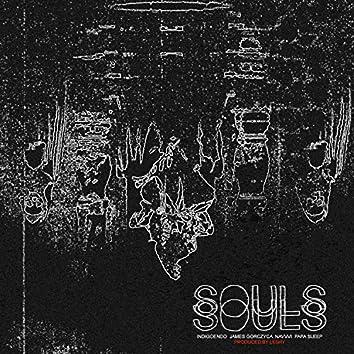Souls. (feat. Indigoendo, Papa Sleep, James Gorczyca & Navvvi)