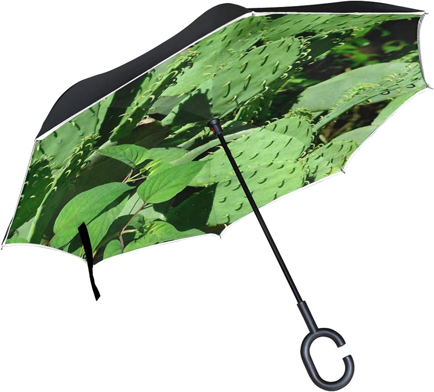 Double Layer Ingreened Cactus Plant Cactus Plant Green Nature Desert Umbrellas Reverse Folding Umbrella Windproof Uv Predection Big Straight Umbrella for Car Rain Outdoor with CShaped Handle
