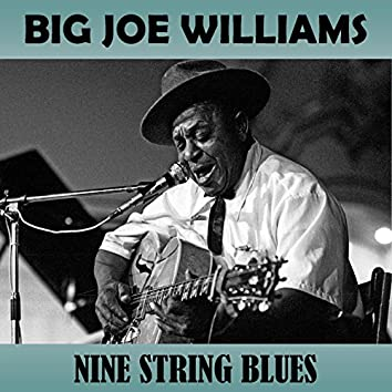 Nine String Blues