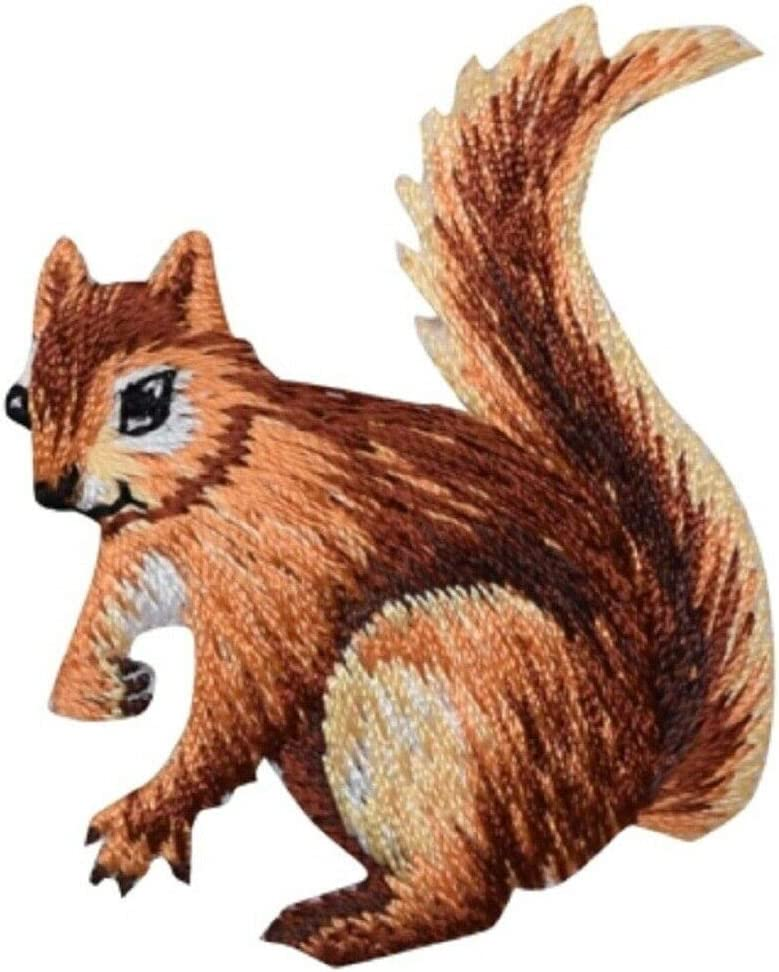 Squirrel Sale price Applique Patch - Animal Iron 1.75