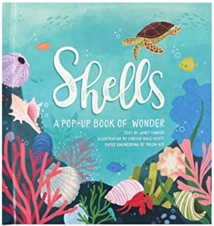 Shells: A Pop-Up Book of Wonder