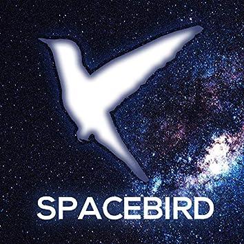 Spacebird