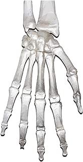 Bargain Max Decals Grenade Skull Skeleton Glove Hand Window Laptop Car Sticker 6