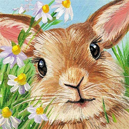 Rabbit Paint by Numbers Kit DIY Oil Painting by Numbers for Adults Beginner Kids with Paintbrushes product image