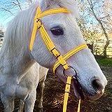 Rhww Cuello De Cabeza De Caballo Engrosado De PU Correa De Seguridad Ajustable para Montar A Caballo Equipo Ecuestre De Cuerda De Entrenamiento,Amarillo