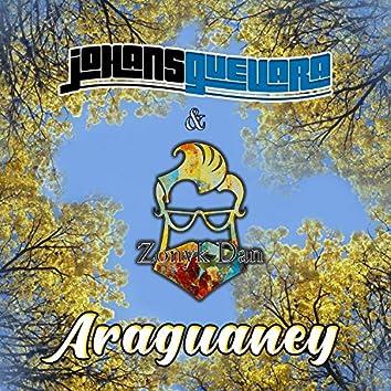Araguaney (Sencillo)