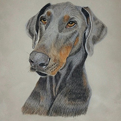 Personalized Pet Portrait Colored Pencil Drawing - Artist Grade - Suede Mat Board