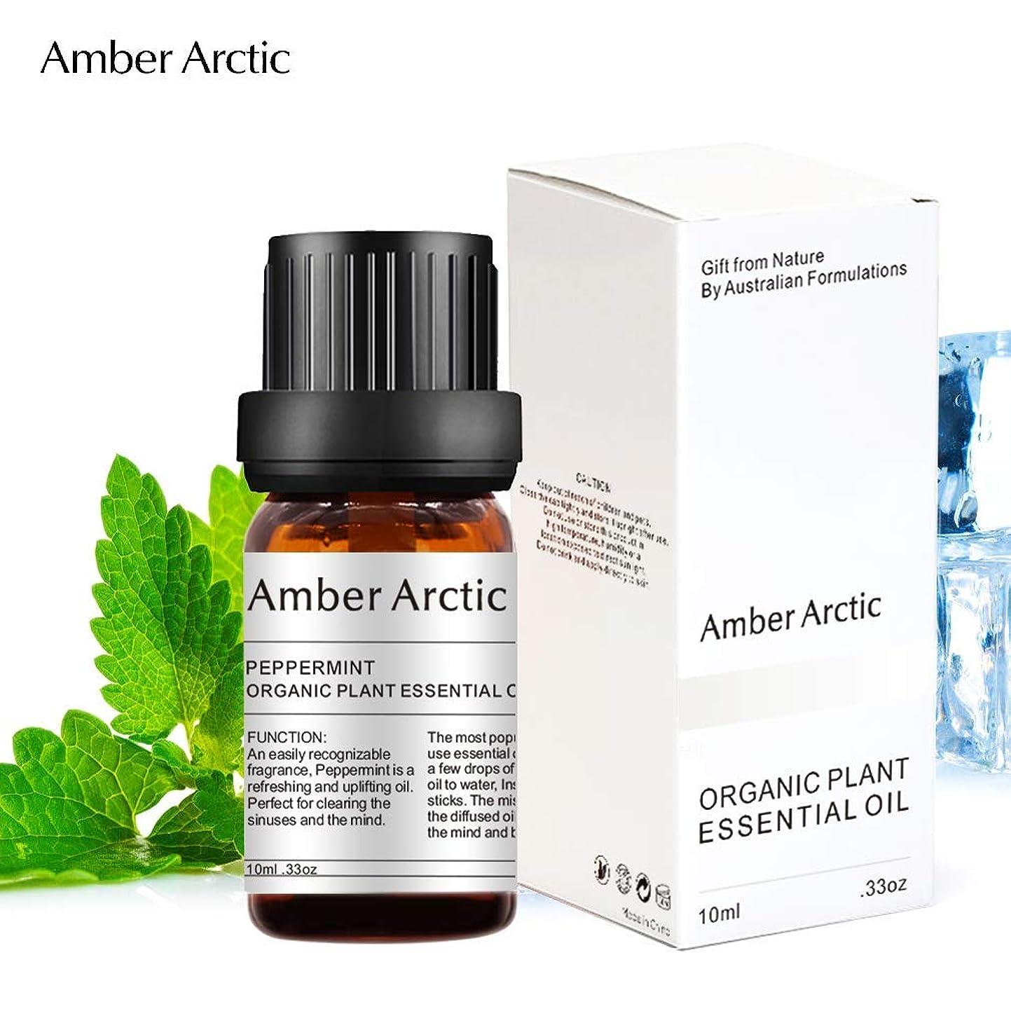 影響を受けやすいです麻痺させる邪悪なAmber Arctic ペパーミント エッセンシャル オイル、100% ピュア 天然 アロマ テラピーペパーミント オイル スプレッド 用 (10ML) ペパーミント