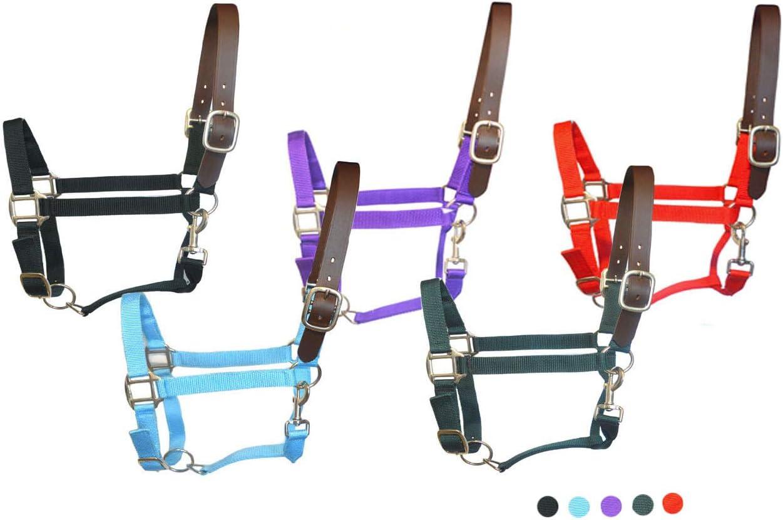 SIE Nylon Breakaway Horse Halters
