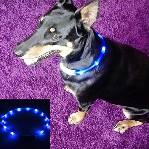 EisEyen - Collar LED para Perros, Collar de luz para Perros, USB Recargable para Perros, Gatos, Cable Incluido