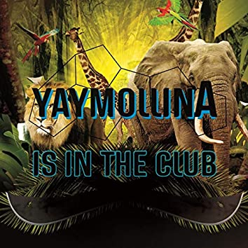 Is in the Club