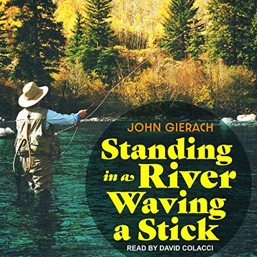 Standing in a River Waving a Stick audiobook cover art