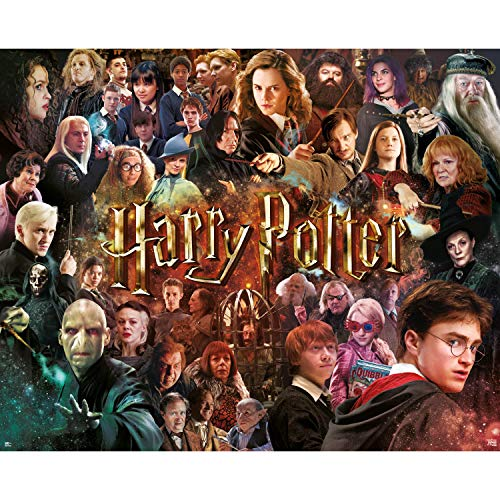 Harry Potter Movie Collage 1000 Piece Jigsaw Puzzle