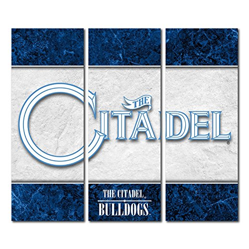 Victory Tailgate Citadel Military College Bulldogs Canvas Wall Art Triptych Double Border Design (48x54 Triptych) image