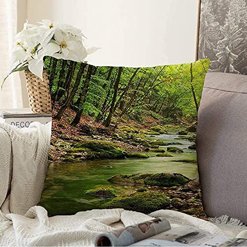 Almohada Decorativa Vista del bosque Belleza Cascada Hoja Río Turismo natural Montaña profunda Diseño de la naturaleza Cañón que fluye Cuadrado Cojín acogedor Funda de almohada para sofá, 16 'x 16'