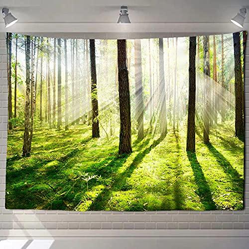 Tapiz de bosque paisaje de cascada pintura de belleza manta de pared decoración del hogar sala de estar tapiz de pared de dormitorio A5 100x150cm