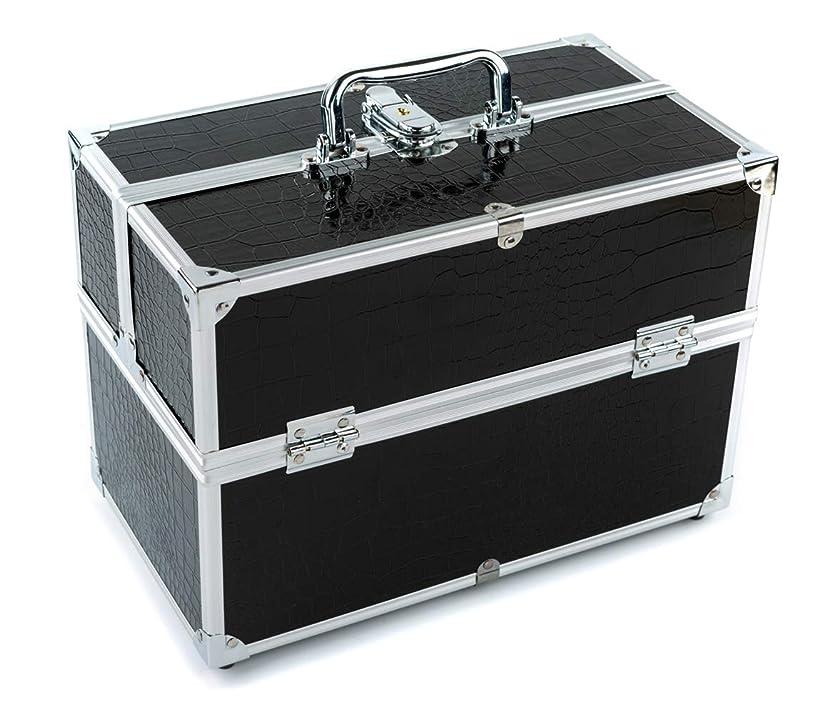 私の赤字スラックGOGOS メイクボックス 持ち運び 人気 かわいい アルミ制 大容量 化粧品収納ケース コスメBOX コスメボック 化粧道具入れ 化粧品収納 取っ手付 祝日プレゼント