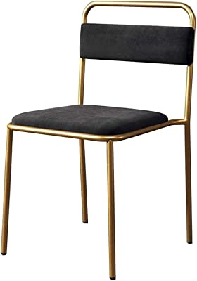 Thermoses Leisure Chairs Dining Chair Mid-Back Support Modern Metal Legs Table Chair Living Room Leisure Coffee Chairs Bedroom 43x55x70cm Durable Strong (Color : Black)