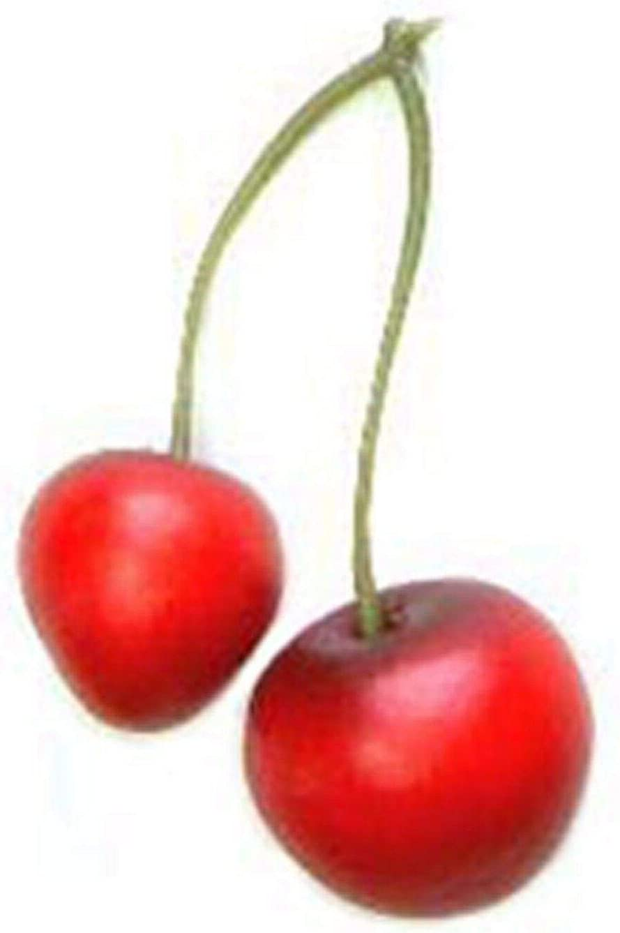 Artificial Red Sales results No. 1 Cherry Pair 20 Sale item Fruit Decorative Cher Artifitial
