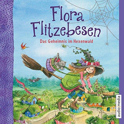Das Geheimnis im Hexenwald audiobook cover art