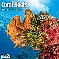 Bright Day Calendars 2021サンゴ礁の壁カレンダー バイ 明るい日、12 x 12 インチ、海の下の海熱帯魚