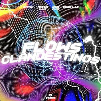 Flows Clandestinos