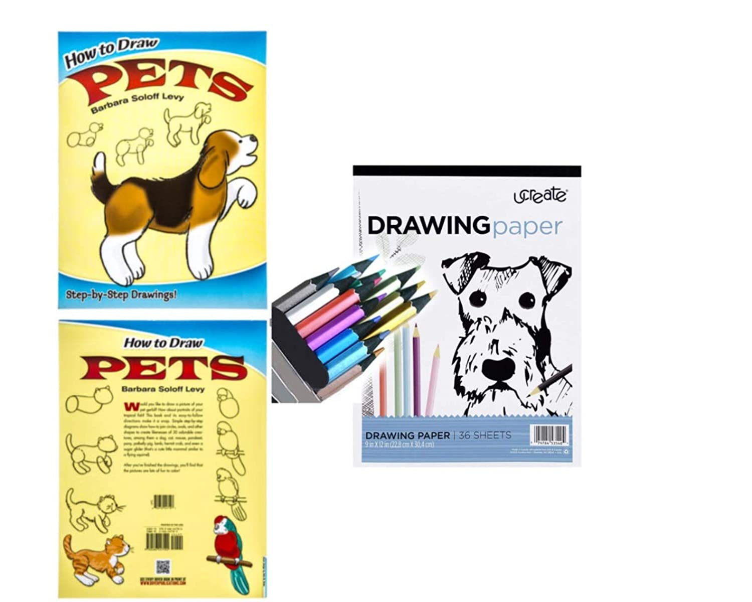 How to Draw Pets Drawing Kit