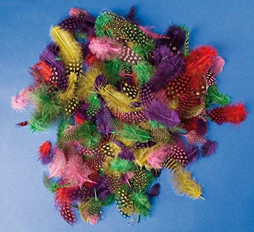 Pärlhönsfjädrar, blandade färger, 100/fp (för påskpynt mm)