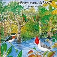 Birds from Brasil