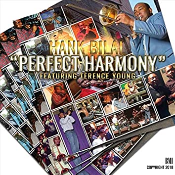 Perfect Harmony (feat. Terence Young)