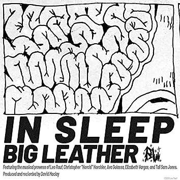 In Sleep (Demo)