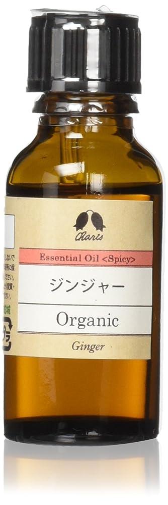ジム騒ぎ保持ジンジャー Organic 20ml