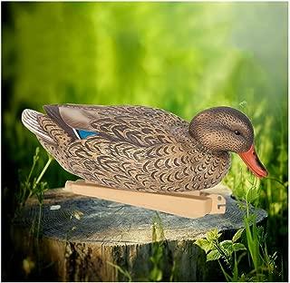 Wing Enterprises Duck Decoys for Land, Hunting Decoys, Realistic Water Mallard Decoy, Teacher Aids, Outdoors Decor for Garden, Pond, Park, 29.51211 cm