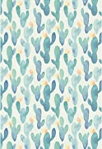 Zhy Cactus Backdrop 7x5ft//2.1x1.5m New Vinyl Blue Flowerpot Photography Background Baby Shower Birthday Banner Photo Shooting Props BJQQST209