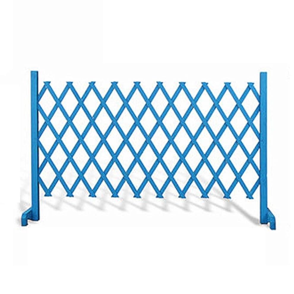 嫌い強制ワットLIXIONG ボーダーフェンス ガーデンフェンスデコレーション 拡大する フェンス 木製 工場 柵 動物 バリア にとって 花 植付 植物 、 5サイズ (Color : Blue, Size : 250x120cm)