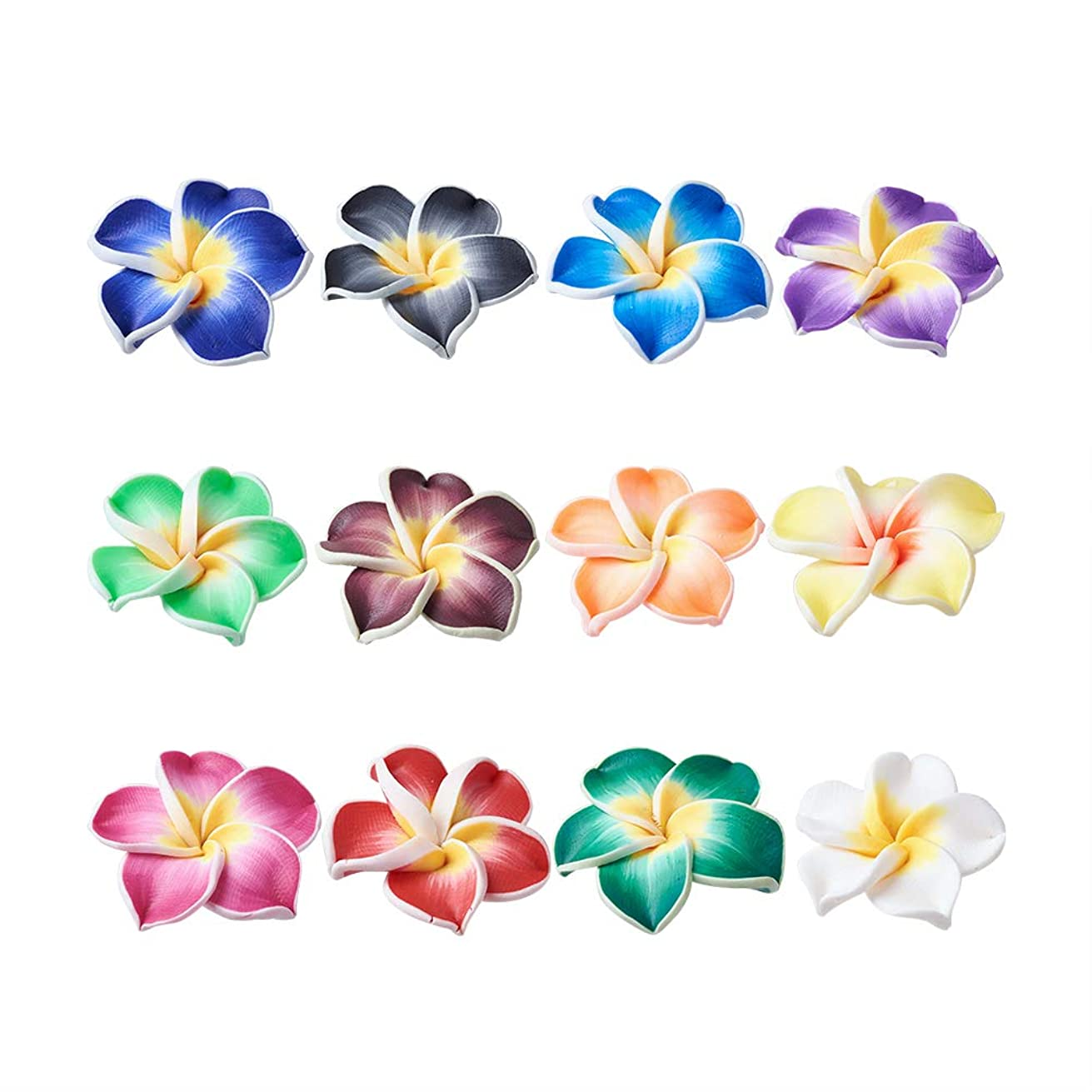 Craftdady 200Pcs 20x10mm Mixed Colors Handmade Polymer Clay Plumeria Flower Beads DIY Jewelry Necklace Bracelet Earring Craft Making Colorful Side Drilled Spacer Beads with 2mm Hole