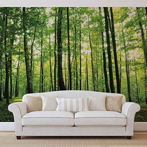 Woud bomen groen natuur - Forwall - fotobehang - behang - fotomural - Mural wandschilderij - (186WM) - PANORAMIC - 250cm x 104cm - VLIES (EasyInstall) - 1 stuk
