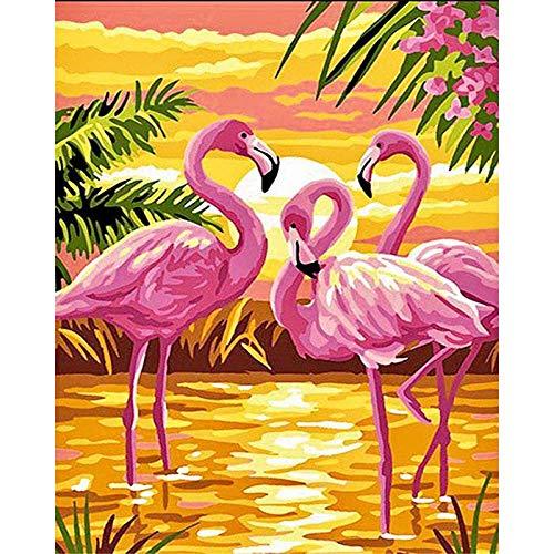 Pintar por Numeros para Adultos Patrón De Flamenco De La Orilla Del Mar Kit de pintura al óleo para bricolaje con Pinceles y Pinturas Decoraciones para el Hogar (Sin Marco) 40x50 cm