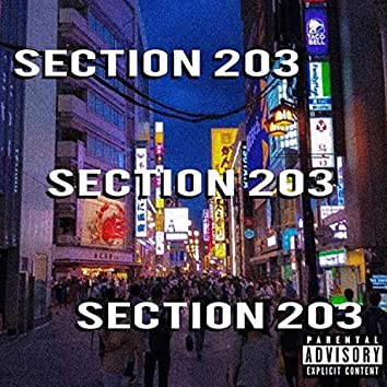 Section 203