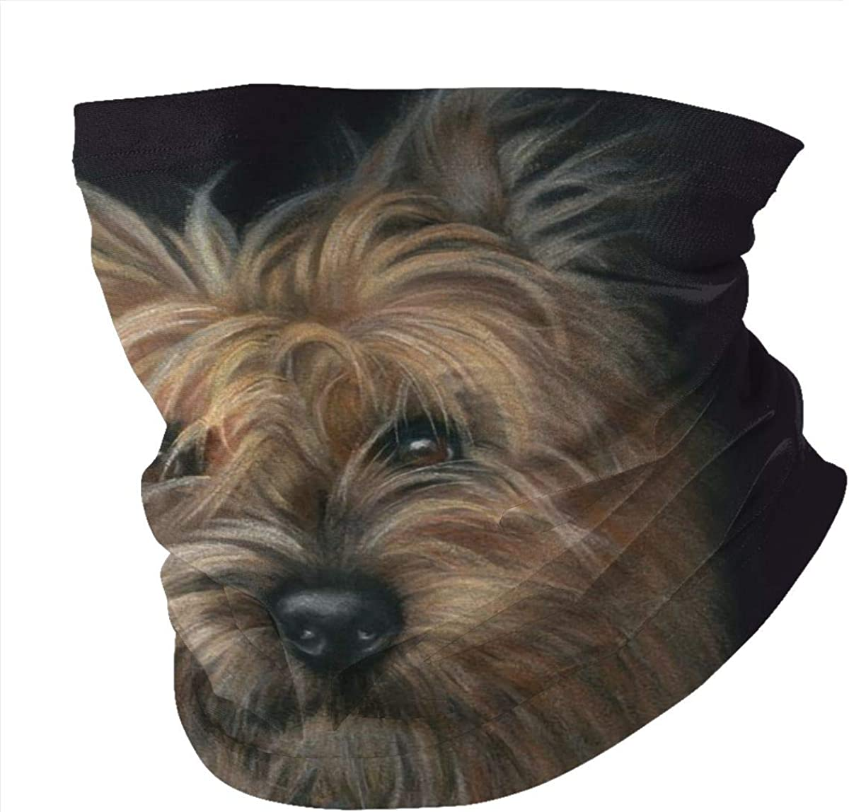 Cairn Terrier Cute Charm Retro Art Headband Headwear Windbreak Scarf Face Mask Washable Dust Mask Balaclava Neck Bandana