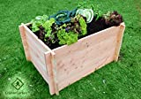 GrünerGarten Hochbeet Komplett-Set GRÖN L-80 - Premiumqualität, Bio Douglasie Blockbohlen, sehr robust, sehr einfacher Aufbau ohne Werkzeug, völlig schadstofffrei