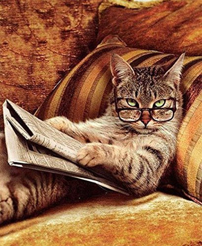 Kit de pintura de diamantes de manualidades 5D,Diamond painting gatos gato leyendo un libro, cristal bordado, punto de cruz, suministros para manualidades, sala de estar, decoración de pared 30x40cm