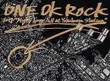 "ONE OK ROCK 2014 ""Mighty Long Fall at Yokohama Stadium"" 通常仕様 [DVD]"