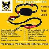 Joggingleine | Premium Hundeleine 120cm Bis 200cm | Elastisch Reflektierend Reißfest Gepolsterter Hüftgurt Hüftbeutel | Freihändig Laufen Spazieren Wandern - 2