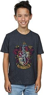 HARRY POTTER niños Gryffindor Distressed Crest Camiseta 9-11 Years Oscuro Heather