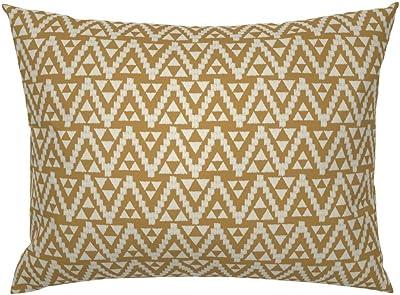 Amazon.com: CiCi contemporáneo pequeña almohada con acabado ...