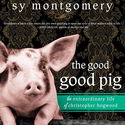 The Good Good Pig audiobook cover art